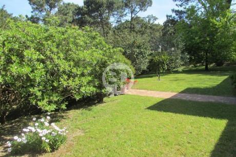 Alquiler anual de casas en punta del este for Jardin 4 maldonado