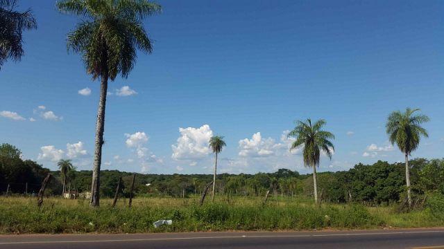 Terreno En Venta Sobre Ruta Nueva Luque - San Ber De 16.590 M2  Oportunidad De Inversión