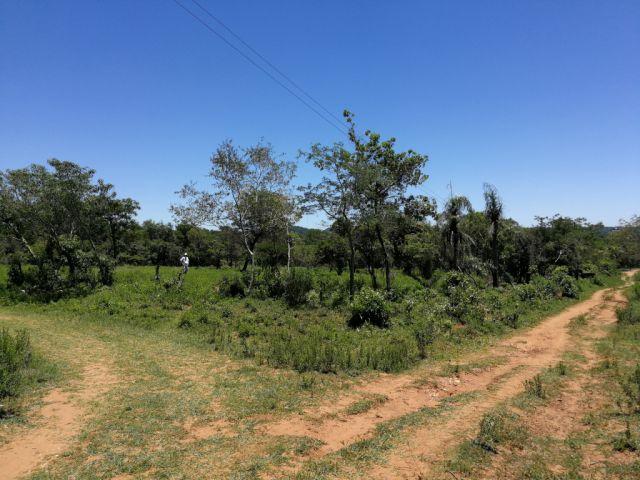 Terreno En Venta En Caacupé De 3.600 M2