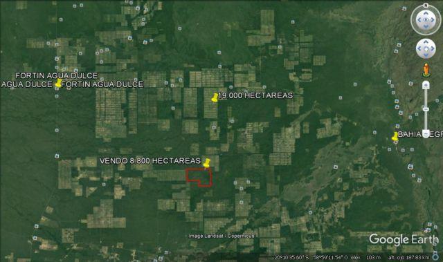 Fuerte Olimpo - Alto Paraguay: Vendo 8.800 Has - 850 Usd / Ha