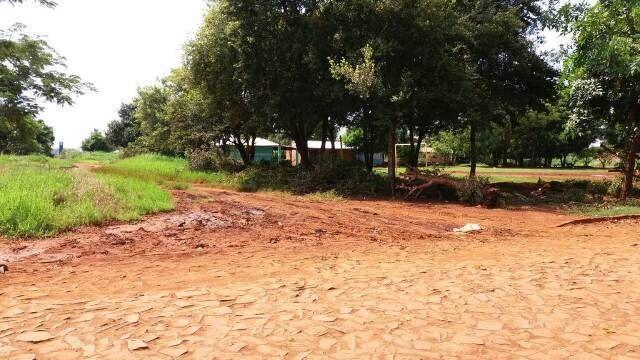 Vendo 3 Terrenos Juntos, En Km 11 Lado Acaray A 1.500 Metros De La Ruta Int N7