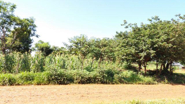 Vendo Terreno De 2290 Mts2 En Km 9 Lado Monday En Empedrado Cde